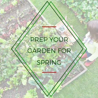 Prep Your Garden For Spring