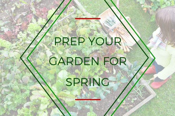 Prep Your Garden For Spring