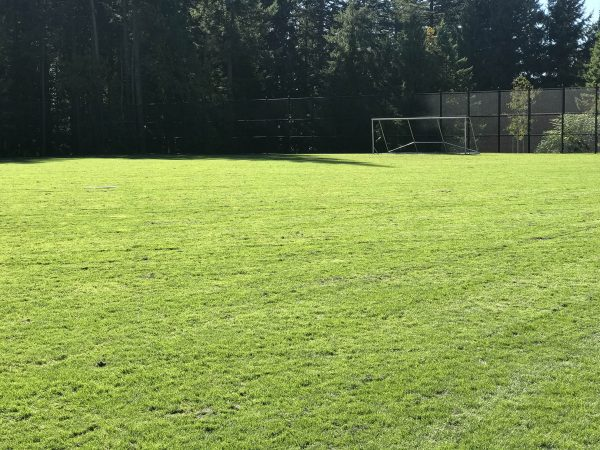 AXIS growing media for sports fields