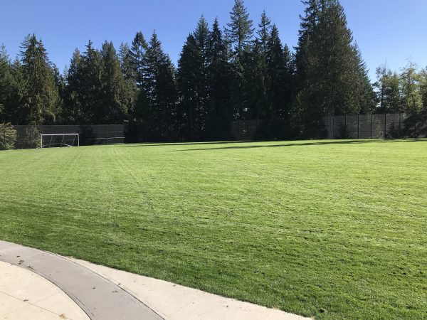AXIS growing media for sports field and high traffic lawns