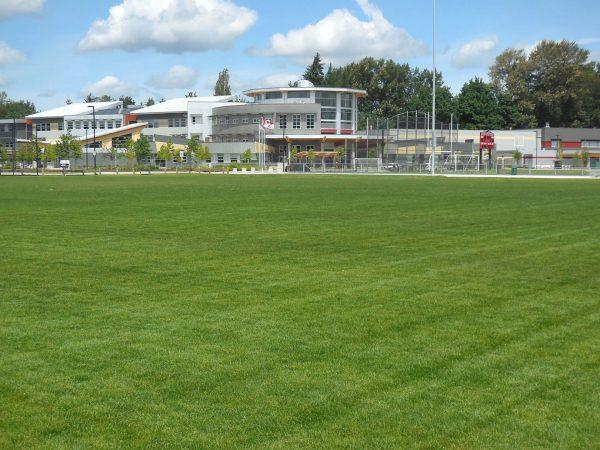 FibreLok growing media for school sports fields