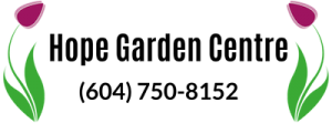 Dealer 3 Logo