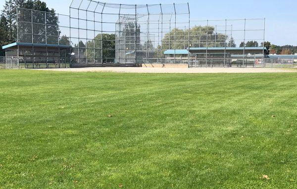 Rootzone - Web - Sports field - Hawthorne Park (2)